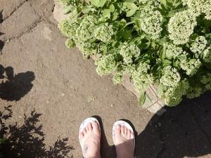 ноги на солнце
