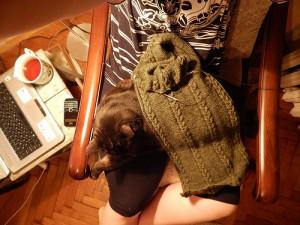 селфи с котом на кресле