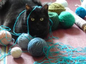 чёрный кот Муся и клубки пряжи
