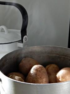 картошка на плите